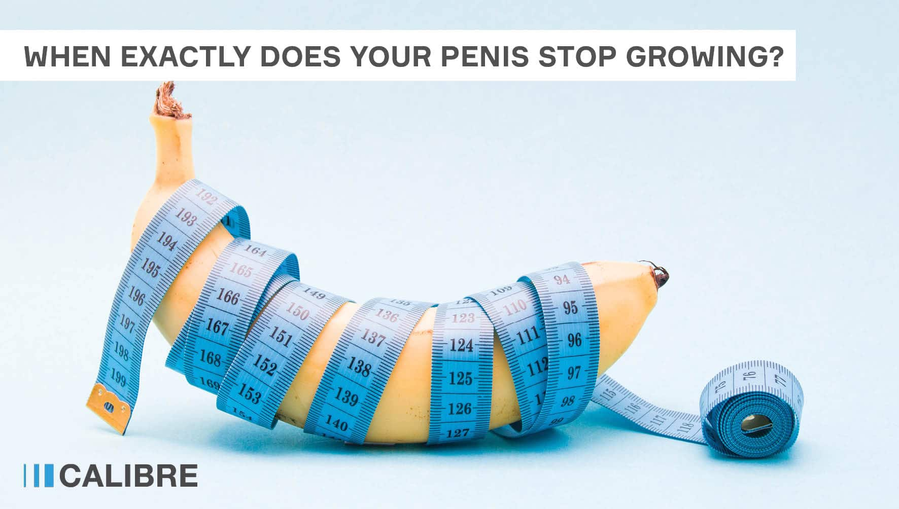 When exactly does your penis stop growing